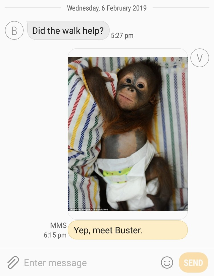 "IMAGE ""did the walk help?"" ""yep, meet buster"" - picture of monkey in a diaper"